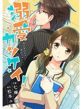 comic Berry's 溺愛カンケイ!8巻