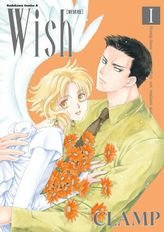 Wish[新装版](角川コミックス・エース)